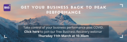 Business Recovery Planning Webinar March 21
